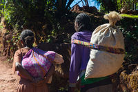 Woman carrying bags, Ethiopia
