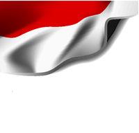Waving flag of indonesia. Vector illustration on white background