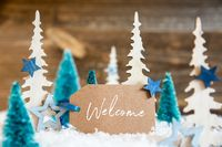 Christmas Trees, Snow, Wooden Background, Label, Text Welcome