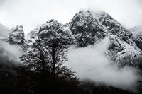View of Muehlsturzhorn and Stadelhorn in the fog, Berchtesgarden, Germany, October 2020