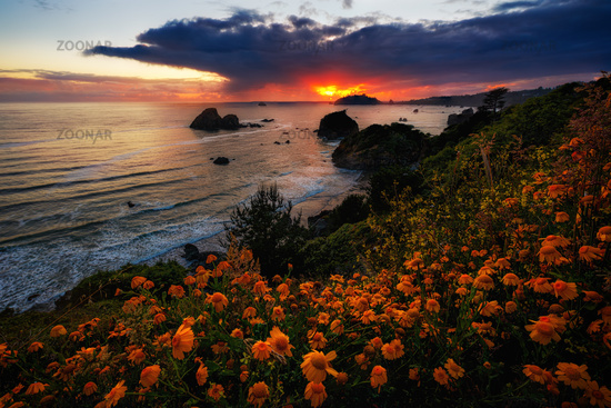 Seascape Sunset in Northern California
