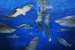 Businessman surrounded by sharks