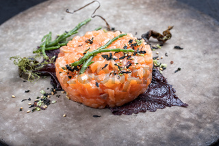 Gourmet fish tartar raw from salmon fillet with glasswort