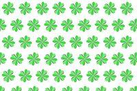 Handcraft pattern from green petals of natural shamrock.