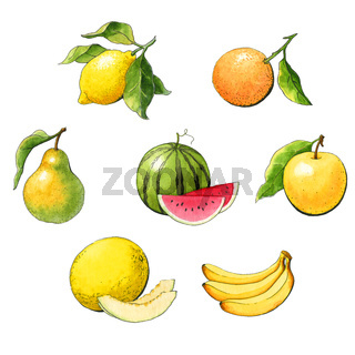 Set of watercolor fruit