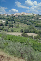 Village of Montefalco in Umbria,Italy