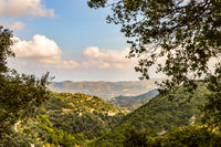 View of hills in Crete with trees in the foreground