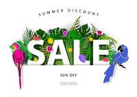 Summer Sale Background or Banner