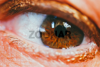 Extremely close up of a woman's eye with makeup. Selective focus macro shot with shallow DOF