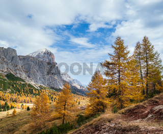 Sunny colorful autumn alpine Dolomites mountain scene, Sudtirol, Italy. Peaceful view from Falzarego Path.