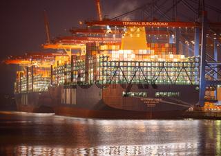 containerhafen_hamburg_011.jpg