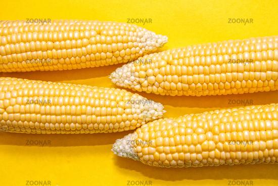 Cobs of ripe corn