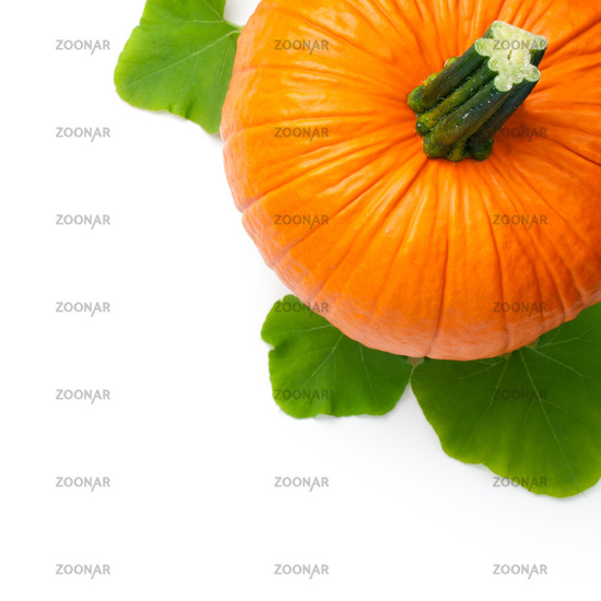 Fresh Pumpkin With Green Leaves Isolated
