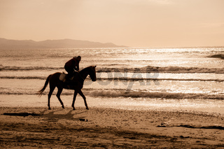 Man riding on a brown galloping horse on Ayia Erini beach in Cyprus against a rough sea
