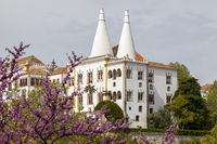 Palácio Nacional de Sintra (auch Palácio Nacional oder Paço Real oder Palácio da Vila genannt