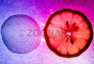 Onion and lemon thin slices macro capture, colorfully illuminated and back lit