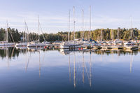 Sail Boats in a Swedisch harbour