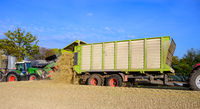 Corn harvest for the feeding of agricultural animals