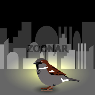 World Sparrow Day. Sparrow on the cityscape on the background.