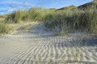 beach Denmark II