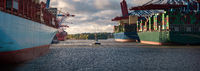 Panorama of a container terminal in Hamburg