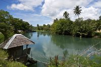 View over a River on Bohol Island