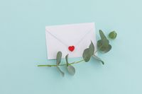 White envelope with heart and twig and leaves lying on pale blue background