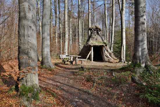 Shelter in the forest near Friedrichsbrunn