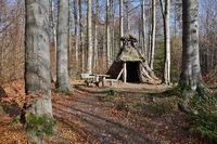 Schutzhütte im Wald bei Friedrichsbrunn
