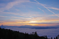 Rhine valley in the sea of fog and evening light