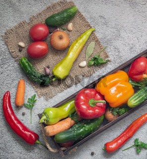 Variety of ripe vegetables on a light background