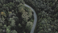 Country road between forest - Aerial view