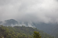 Fog in the Troodos Mountains, Cyprus