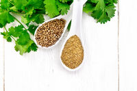 Coriander ground and seeds in two spoons on white board top