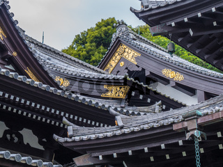 Beautiful roofs of Hase-Dera Temple in Kamakura