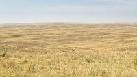 Nebraska Sandhills panorama at sunny hazy day