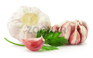 Fresh garlic with parsley isolated on white
