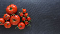 Different organic tomato varieties on a dark stone kitchen table