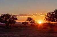 sunrise landscape Hidden Vlei in Namibia, Africa
