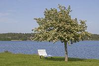 Relax at Lake Vaenern