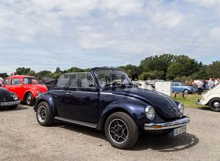 Volkswagen Beetle Meeting in Celle, Germany