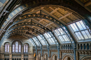 Ceiling detail of the Natural History Museum in London