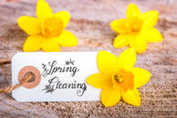 White Label With Calligraphy Spring Cleaning. Yellow Tulip Flower Blossoms