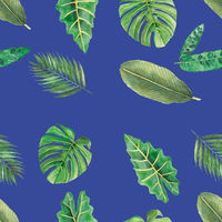 Tropical botanical leafs