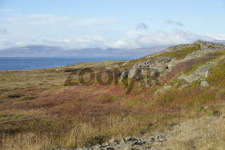 Vatnsfjordhur, Westfjorde, Island, im Herbst