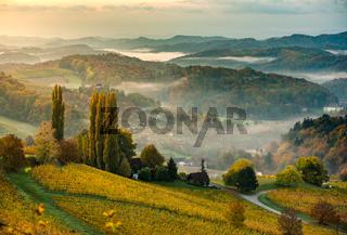 South styria vineyards landscape, Tuscany of Austria. Sunrise in autumn.
