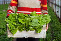 Woman holding container full of salad