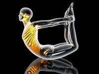 Yoga - Dhanurasana