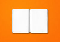 Open book isolated on orange