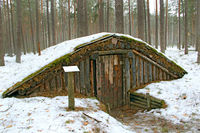 Partisan dugout in winter forest. Earth-house built by Soviet partisans in Ukrainian forest during S